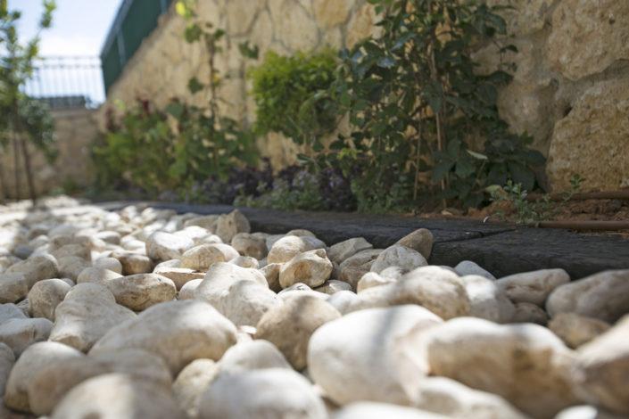 גינה עם סלעים
