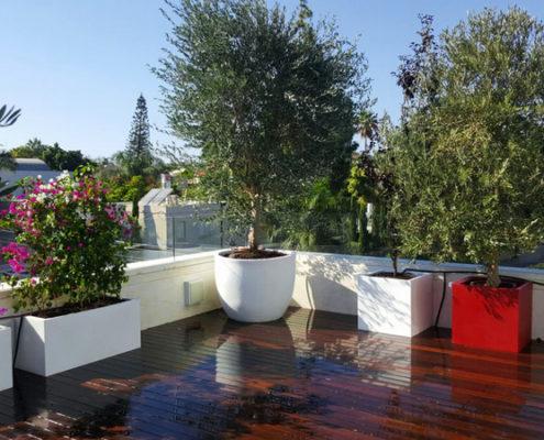 דוגמה לגינות גג ומרפסות, הצעד הבא בעיצוב הגינה