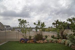 הקמת גינה ירוקה