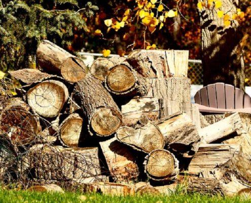 עצים לאחסון עצי הסקה - בגינה בפתח תקווה