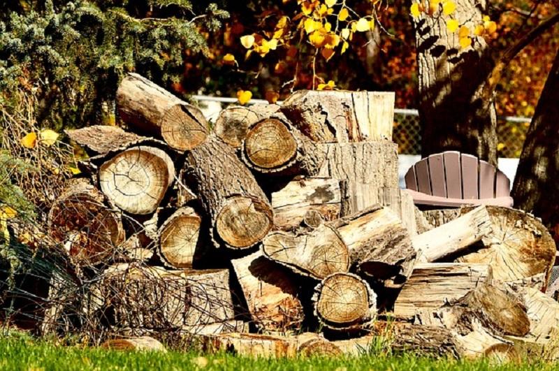 עצים לאחסון עצי הסקה