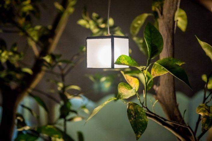 תאורה מעוצבת לגינה