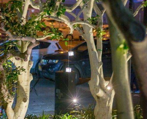 תאורת גן לגינה