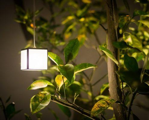 תאורת גינת חוץ יוקרתית - עיצוב גינות